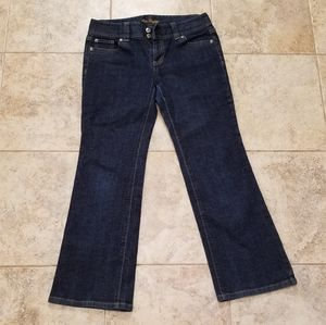 Ann Taylor Great Condition Boot Cut Blue J…